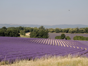 1-art-retreats-provence-all-levels-2